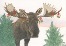 mistletoe moose christmas cards